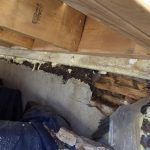 Expertise de toiture