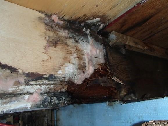 Expertise en vice caché, détérioration avancée des solives du plancher