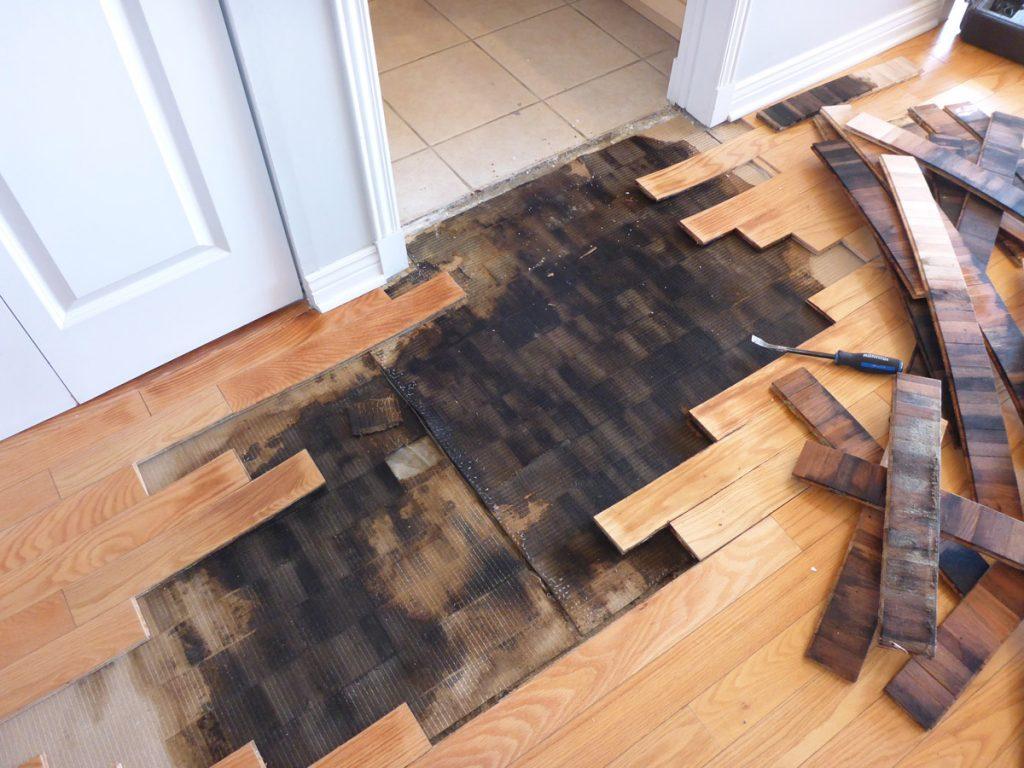 Expertise infiltration d'eau sous le plancher en bois